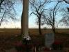 Cmentarz menonicko-ewangelicki w Trylu